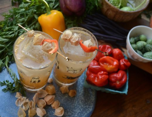 Ground Cherry Pisco Sour with Lemon and Sherry