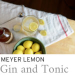 meyer lemon cocktail with tea towel